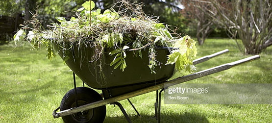 green waste removal services