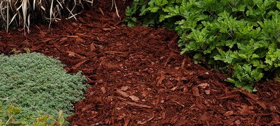 new mulch in a garden