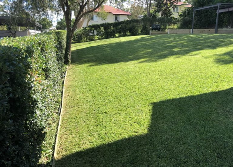 photos of lawn mowing done in carbrook
