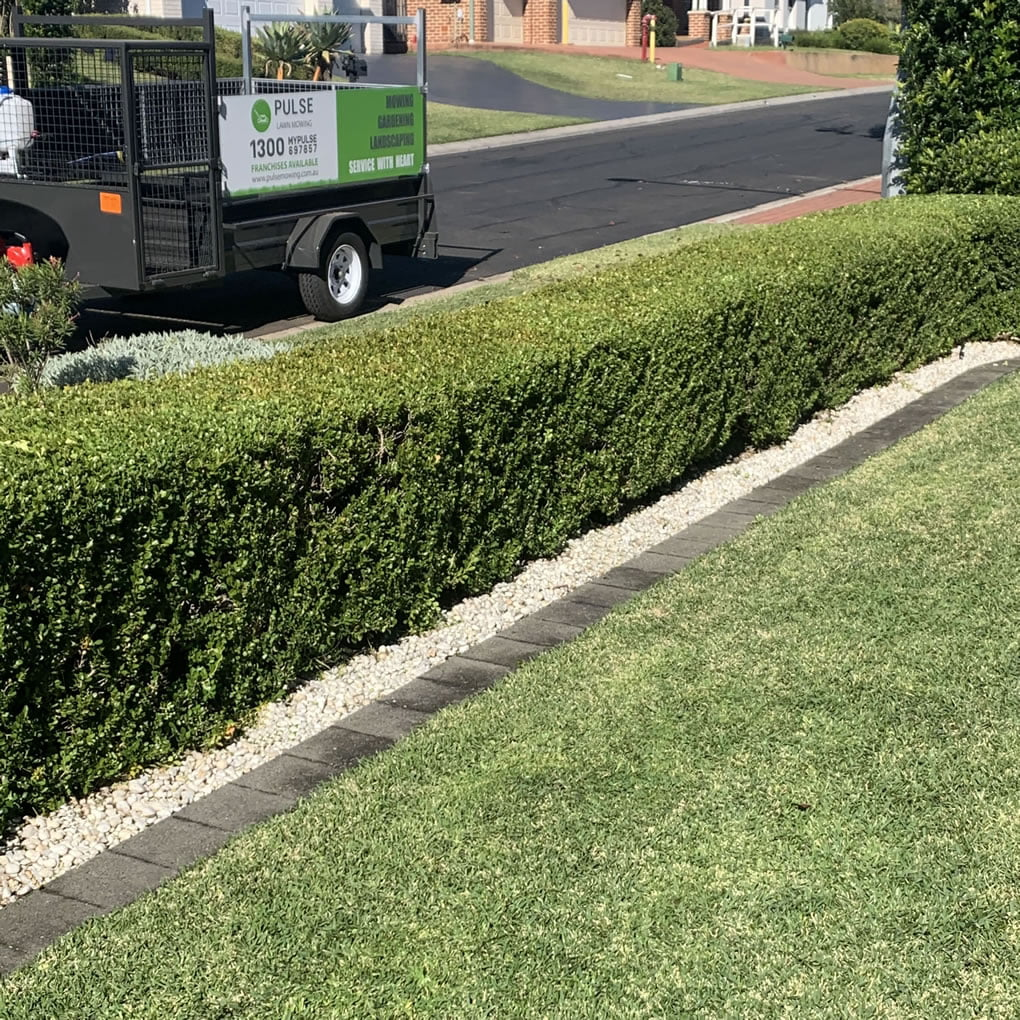 pulse lawn mowing trailer and hedging with fresh cut lawns